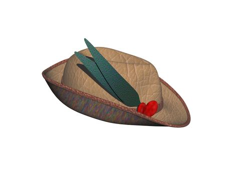 brown felt hat with brim and feather
