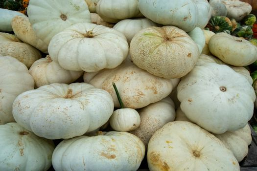 A Pile of Large White Pumpkins in a Wooden Box at a Farmer's Market Filling the Frame