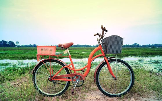 An orange retro-style bicycle with a basket for luggage, parked by the river as the sun shines through the concept of exercise and leisure with leisure activities on the weekend.