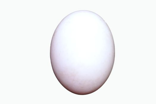 One fresh egg. Ingredient concept of cooking isolated white background.