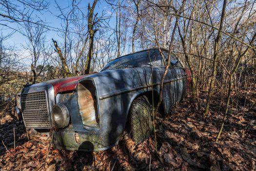 Rusty Mercedes car in an overgrown garden
