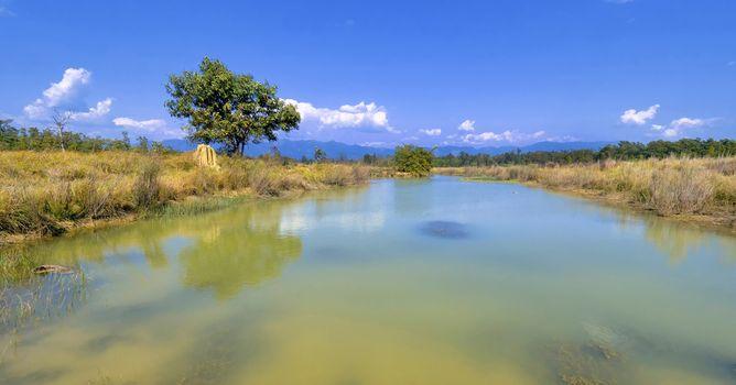 Wetlands, Royal Bardia National Park, Nepal