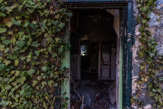 open door of an overgrown house in the forest