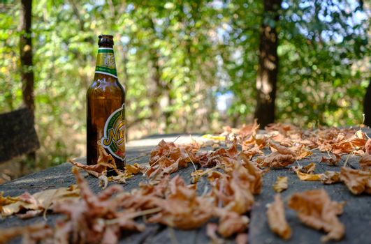 Bottle of Montenegrin Niksic Beer on a table in a park with Autumn leaves