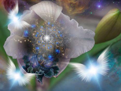 The flower of God. Spiritual art. 3D rendering