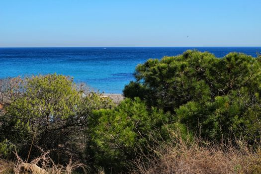 Green Landscape in southern Spain on the beach