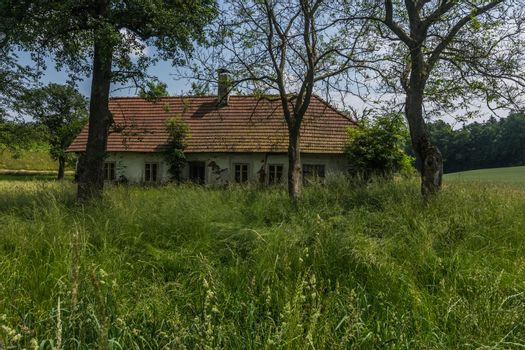 abandoned old house in nature with high grass in the countryside