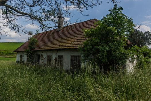 old overgrown house in nature with grass and trees in the country