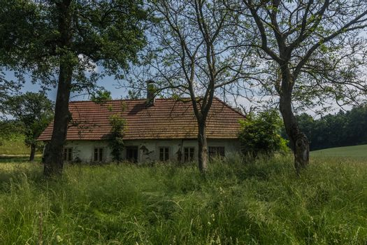 small house in high grass and trees in nature