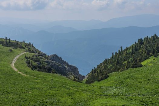 green alpine meadow and hiking trail in the mountains and summer