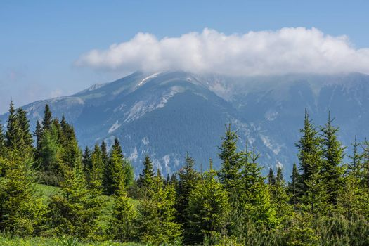 Landscape with trees and mountain with clouds while hiking in summer