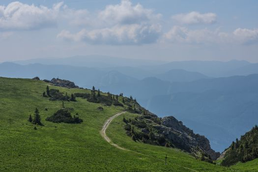 hiking trail with green alpine pasture and rocks in the mountains