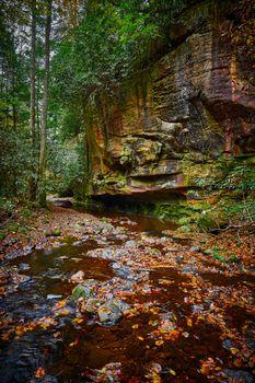 Large rock cliff along Flat Lick Creek near Gray Hawk, Kentucky.