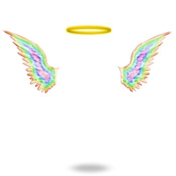 Angels wings and halo