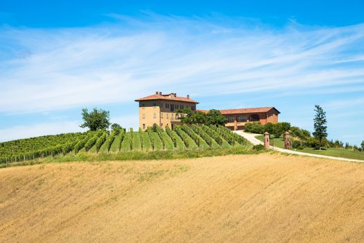 ASTI, ITALY - CIRCA AUGUST 2020: Piedmont hills in Italy, Monferrato area. Scenic countryside during summer season with vineyard field. Wonderful blue sky in background.