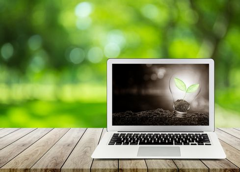 Light bulb with plant growing inside on soil ecology with laptop