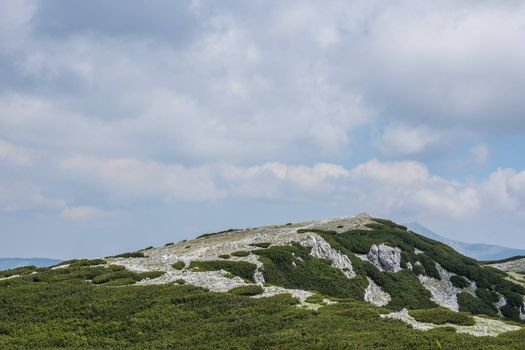 sky and mountain landscape with rocks and low plants