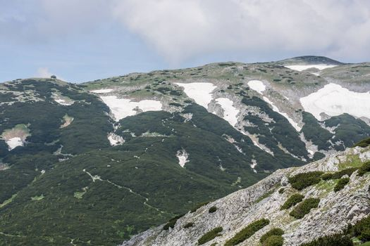 Landscape in the mountains with snow rocks and plants while hiking