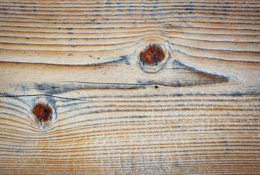wooden board with stylized reptile shape
