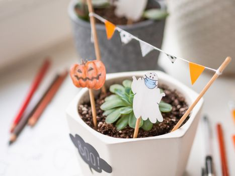 Hand drawn Halloween 2020 decorations in flower pots with crassula succulent plants. Ghost in medical protective mask and pumpkins in flower pot. Cozy home.