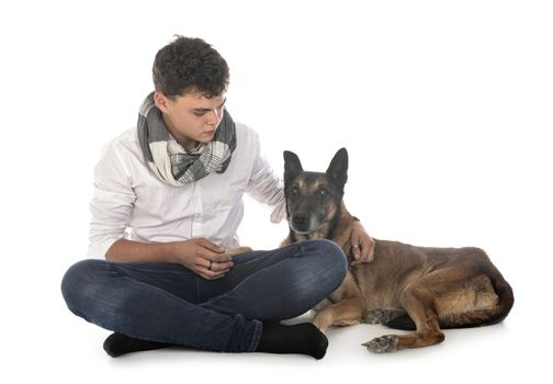 old malinois and young man