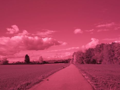 Infrared photo of a landscape in autumn with track