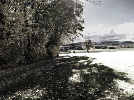 Infrared photo of a landscape in autumn