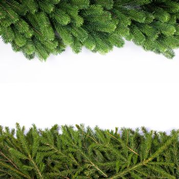 Natural noble and classic fir Christmas tree border frame isolated on white , copy space for text