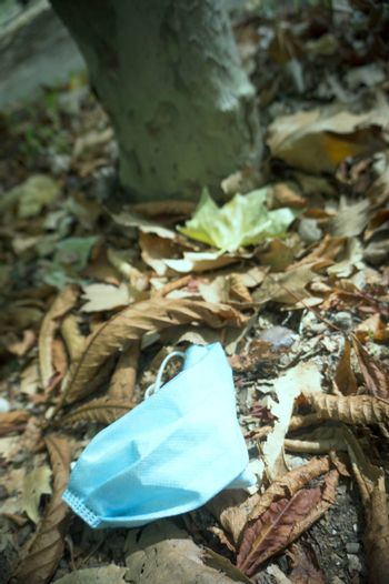 Used surgical mask lying on dry leaves in the field. Pollution in nature