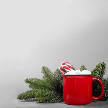 Cocoa in red mug with marshmallows and candy cane and natural fir tree franch on gray background with copy space