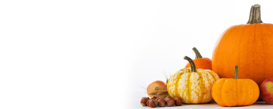 Autumn fruits and vegetables isolated on white background