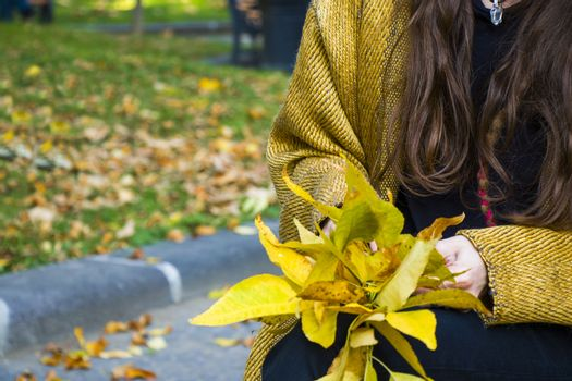 Autumn and fall yellow leave close-up, nature background, yellow color leave and hand holding leaf