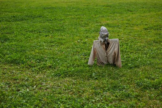 Scarecrow in field. Scarecrow on nature background