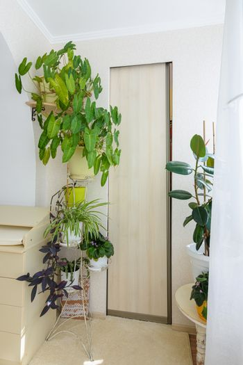 Built-in wardrobe hidden by a compartment door on a spacious glazed balcony