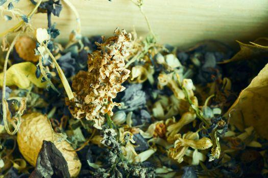 Dry flowers and plants, herbal tea, dried flowers