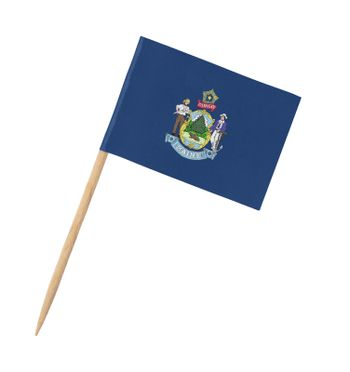 Small paper US-state flag on wooden stick - Maine