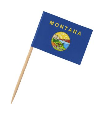 Small paper US-state flag on wooden stick - Montana