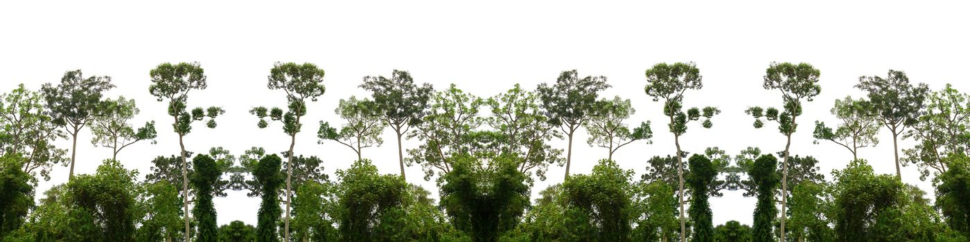 Green forest billboard isolated from white background