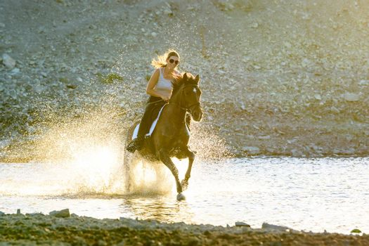 A girl rides a horse in the evening in the water along the river bank