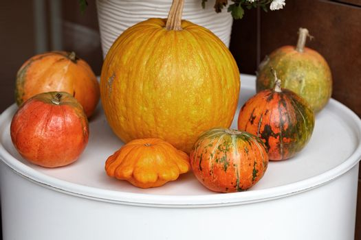 Autumn still life at the entrance to the house, pumpkins of different sizes, close-up.