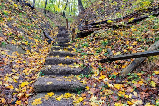 Old stone staircase on a hillside in the autumn forest.