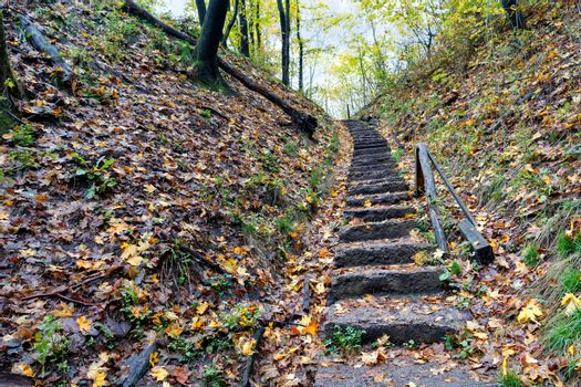 An old stone staircase on a hillside in the autumn forest leads upstairs.