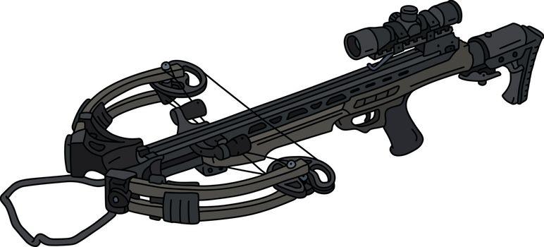 The modern sport crossbow