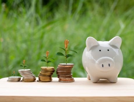 Piggy bank and money coin are placed on wooden table on natural background. With trees growing on a pile of money It represents the concept of financial growth. Business ideas and savings