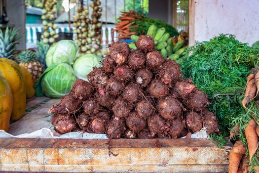 Neat group of taro in the foreground, surrounded by papayas, cabbages, carrots, pineapples, bananas and onions..
