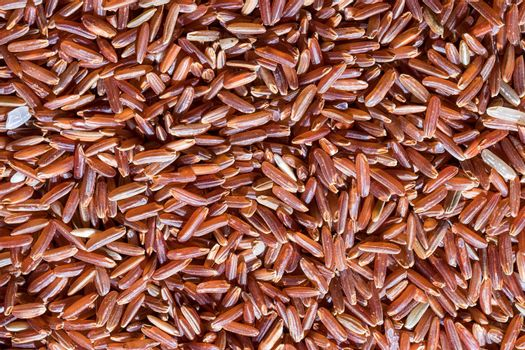 Texture of grains of red uncooked rice close-up.