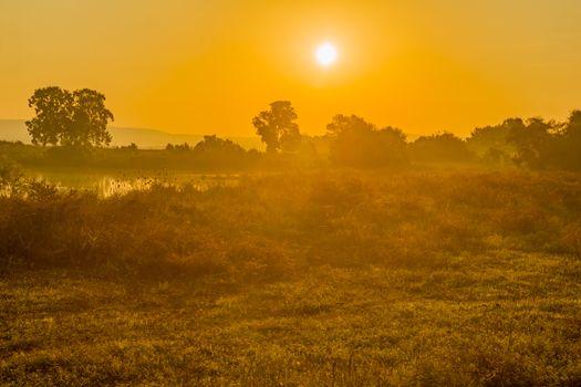 Sunrise view over wetland, in En Afek nature reserve, northern Israel