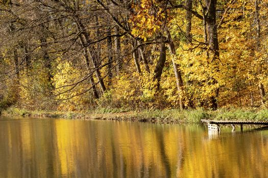 Autumn landscape with lake shore in sunlight background. Horizontally.