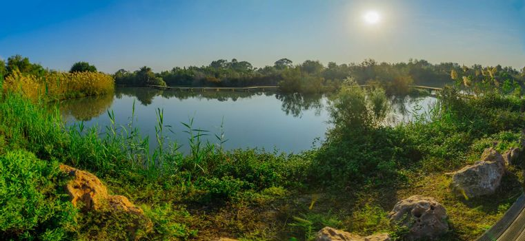 View of a pond with an elevated pathway, in En Afek nature reserve, northern Israel