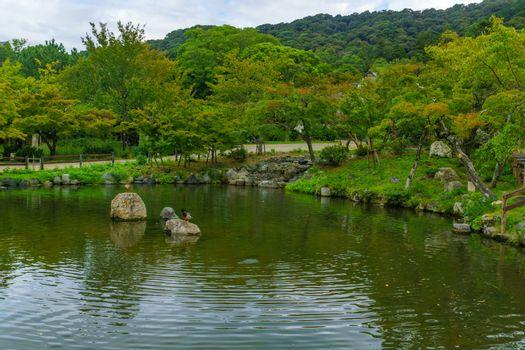 View of a pond in the Maruyama Park, in Kyoto, Japan